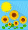 flat style sunflower vector image