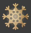 gold snowflake vector image