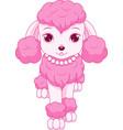 pink poodle vector image