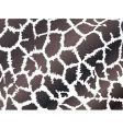 giraffe skin style vector image vector image
