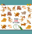 find one of a kind with dogs vector image