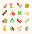 set of spice vector image