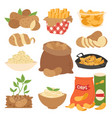 vegetable potato products vector image