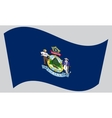 Flag of Maine waving on gray background vector image