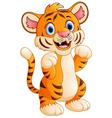 baby tiger cartoon vector image