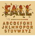 Hand drawn fall alphabet made with leaves vector image