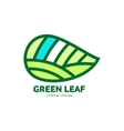 Horizontal pointed green leaf logo template vector image