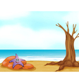 A starfish in a stone vector image