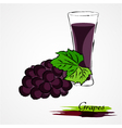 grapes juice vector image