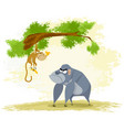 two funny apes vector image