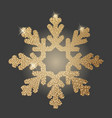 gold snowflake on dark background vector image