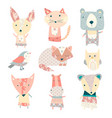 patchwork cute animal vector image vector image