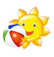 sun with beach ball vector image