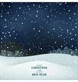 Winter Christmas night vector image