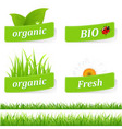 sticker with text vector image vector image