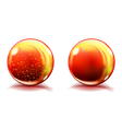 Two big orange glass spheres vector image