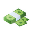 stack of dollar bills isometric vector image