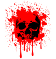 skull blood vector image