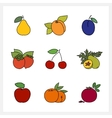 Fruit Growing on a Trees vector image