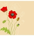 Red poppy on beige background vector image