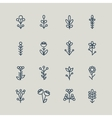 Set of abstract line icons flowers vector image