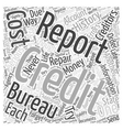 Credit Repair the Do It Yourself Way Word Cloud vector image
