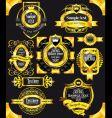 golden vintage black labels vector image