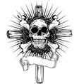 skull cross vector image