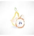 Apple and pear grunge icon vector image vector image