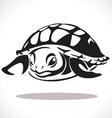 turtle 2 vector image