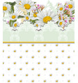 chamomile flowers card retro style lace and vector image