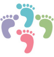 foot prints color on white background vector image