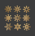 set of snowflakes with gold glitter texture vector image