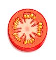 Slice of tomato vector image