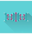 DNA flat icon vector image
