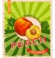 Peach retro poster vector image