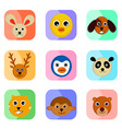 Cute animal faces vector image