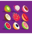 Tropical Fruits Sliced In Half Set Of Bright Icons vector image