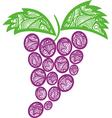 ornamental pattern Grape vector image