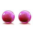 Two big pink glass spheres vector image
