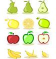 Set of fruits on white background vector image