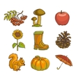 Autumn or fall icon and objects set for design vector image