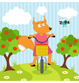 squirrel riding bicycle vector image