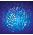 brain and creativity vector image