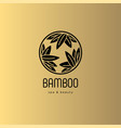 logo bamboo leaves spa salon vector image
