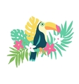 Tropical bird toucan and exotic plants and flowers vector image