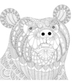 zentangle bear head for adult anti stress coloring vector image