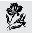 decorative lily vector image vector image