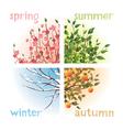 4 seasons in 1 tree vector image