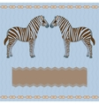 Zebra card with stripes vector image